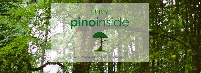pino-inside-realizzazione-siti-web-viareggio